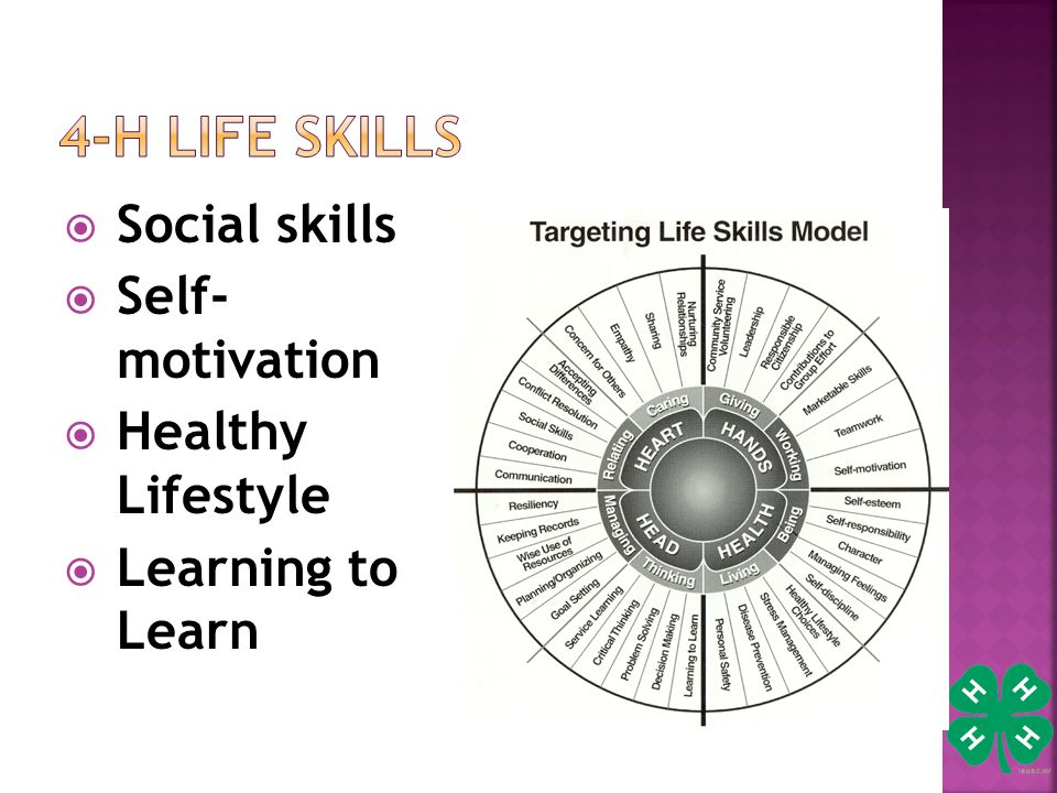  Social skills  Self- motivation  Healthy Lifestyle  Learning to Learn