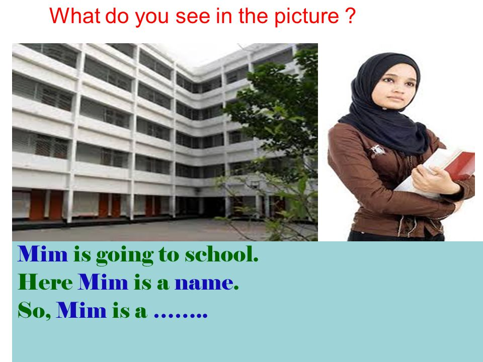 Mim is going to school. Here Mim is a name. So, Mim is a …….. What do you see in the picture ?