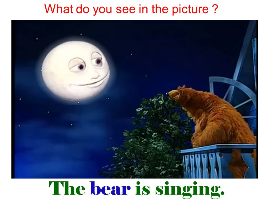 The bear is singing. What do you see in the picture ?