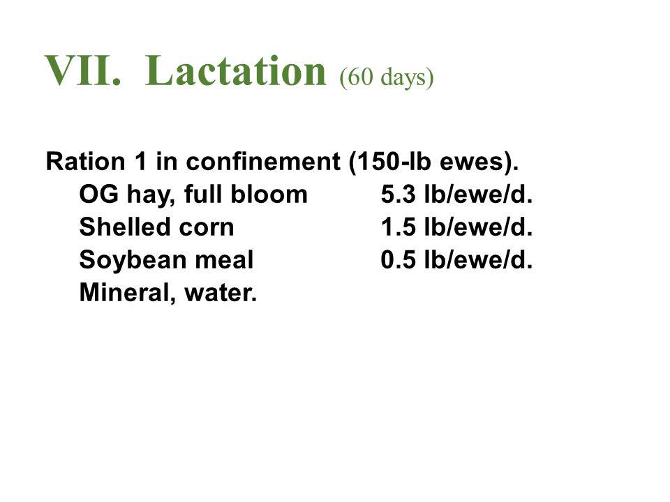 VII. Lactation (60 days) Ration 1 in confinement (150-lb ewes). OG hay, full bloom5.3 lb/ewe/d. Shelled corn1.5 lb/ewe/d. Soybean meal0.5 lb/ewe/d. Mi