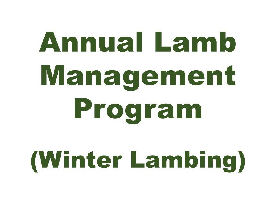 Annual Lamb Management Program (Winter Lambing)