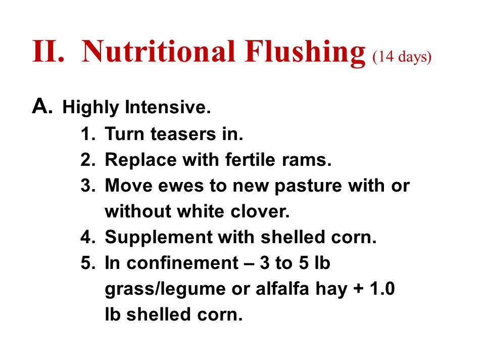 II. Nutritional Flushing (14 days) A. Highly Intensive.