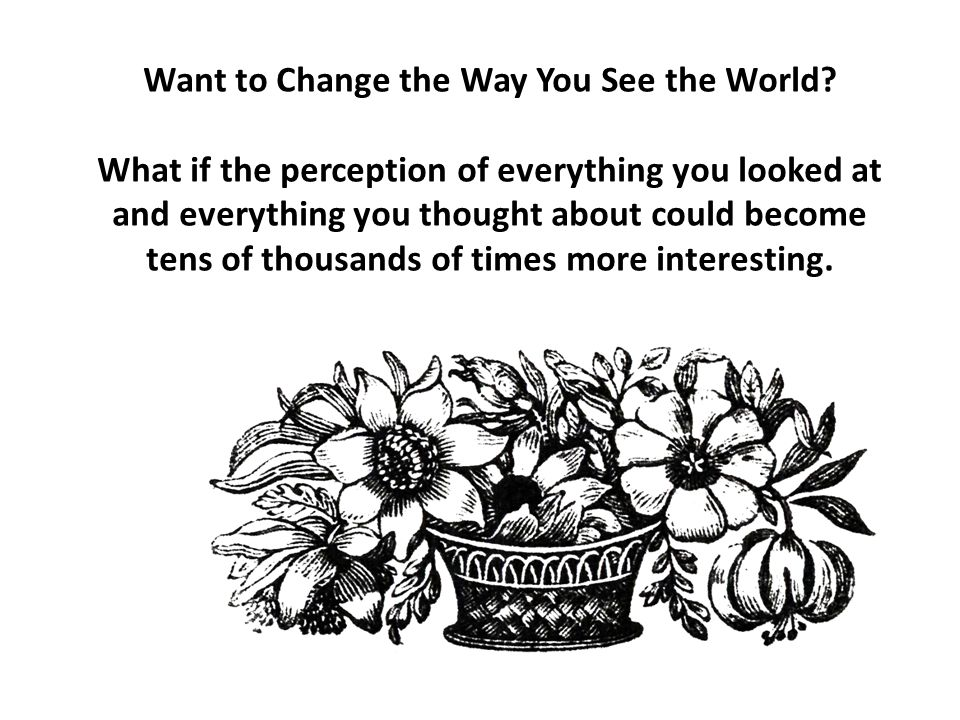 Want to Change the Way You See the World? What if the perception of everything you looked at and everything you thought about could become tens of tho