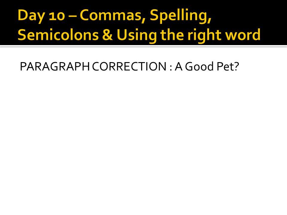 PARAGRAPH CORRECTION : A Good Pet?