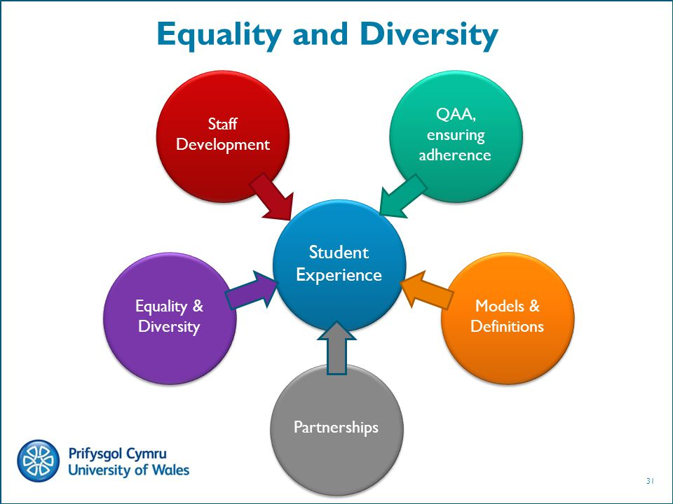 31 Equality and Diversity Student Experience Staff Development QAA, ensuring adherence Equality & Diversity Models & Definitions Partnerships