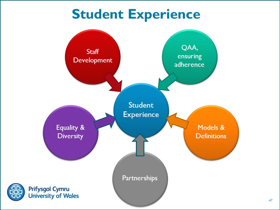 47 Student Experience Staff Development QAA, ensuring adherence Equality & Diversity Models & Definitions Partnerships