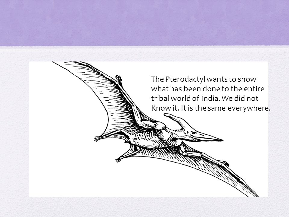 The Pterodactyl wants to show what has been done to the entire tribal world of India.