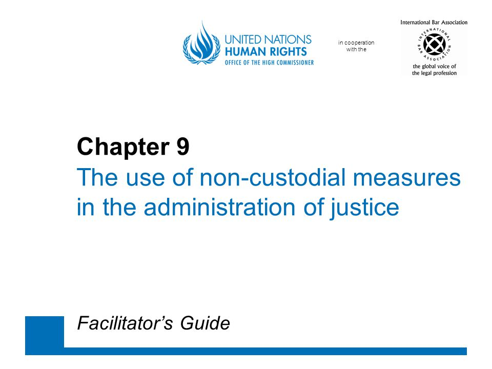 in cooperation with the Chapter 9 The use of non-custodial measures in the administration of justice Facilitator's Guide