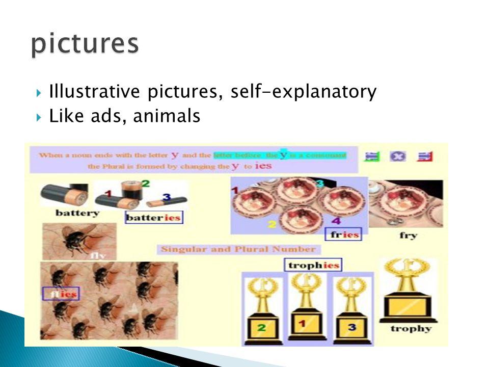  Illustrative pictures, self-explanatory  Like ads, animals