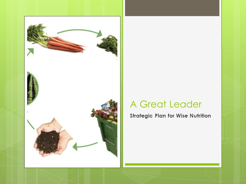 A Great Leader Strategic Plan for Wise Nutrition