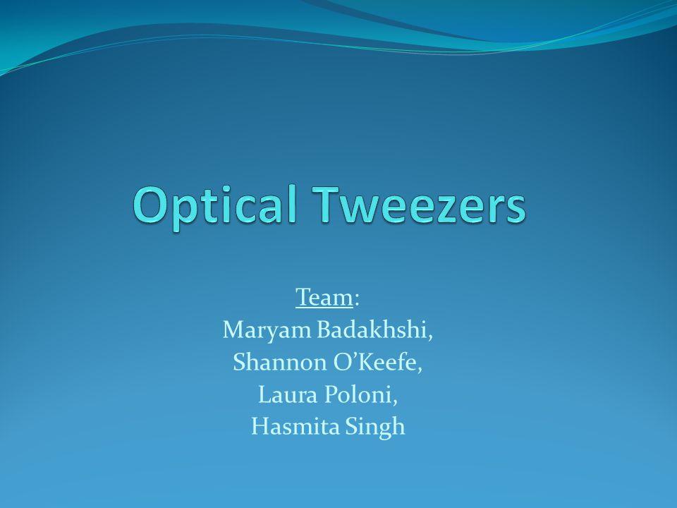 Team: Maryam Badakhshi, Shannon O'Keefe, Laura Poloni, Hasmita Singh