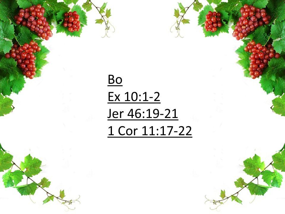 Bo Ex 10:1-2 Jer 46:19-21 1 Cor 11:17-22