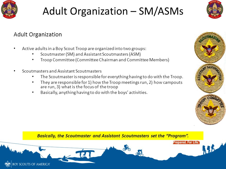 Adult Organization Active adults in a Boy Scout Troop are organized into two groups: Scoutmaster (SM) and Assistant Scoutmasters (ASM) Troop Committee