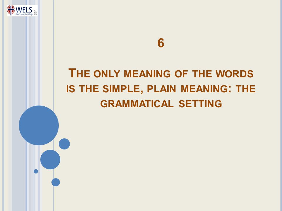 6 T HE ONLY MEANING OF THE WORDS IS THE SIMPLE, PLAIN MEANING : THE GRAMMATICAL SETTING