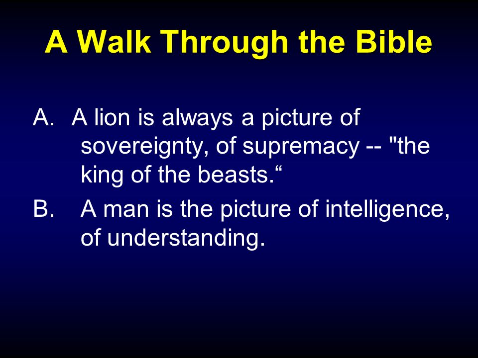 A Walk Through the Bible A.A lion is always a picture of sovereignty, of supremacy -- the king of the beasts. B.A man is the picture of intelligence, of understanding.