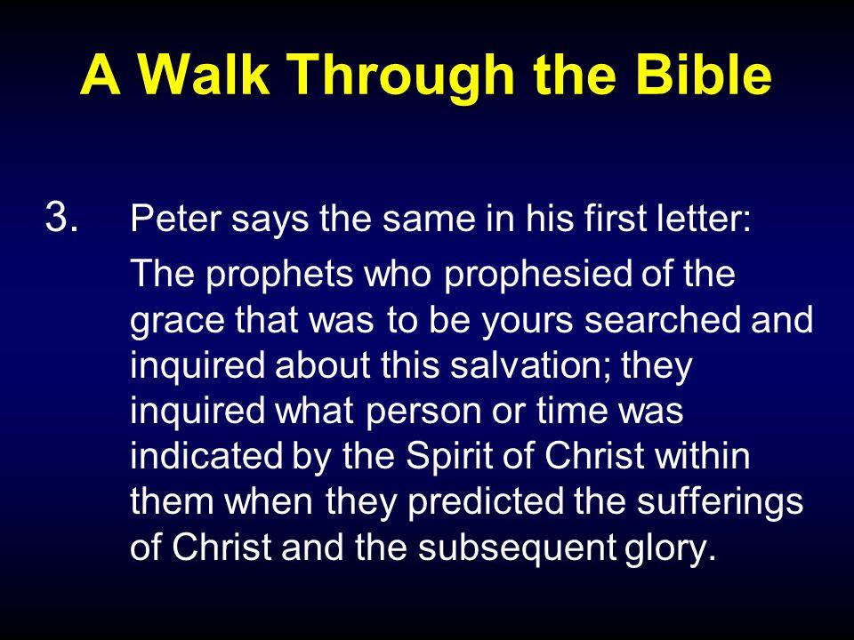 A Walk Through the Bible 3.