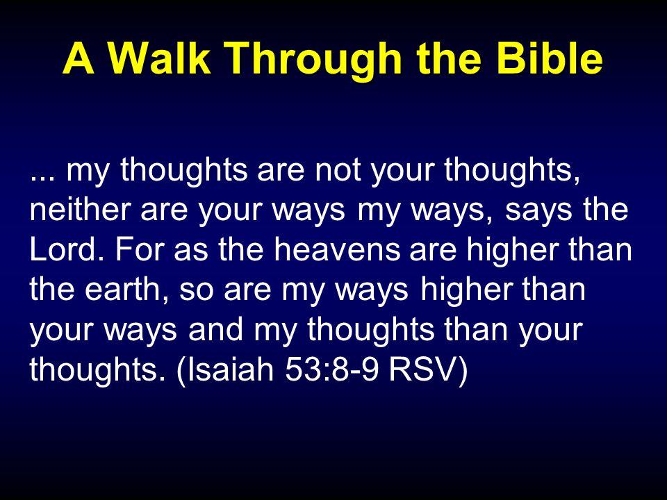 A Walk Through the Bible...