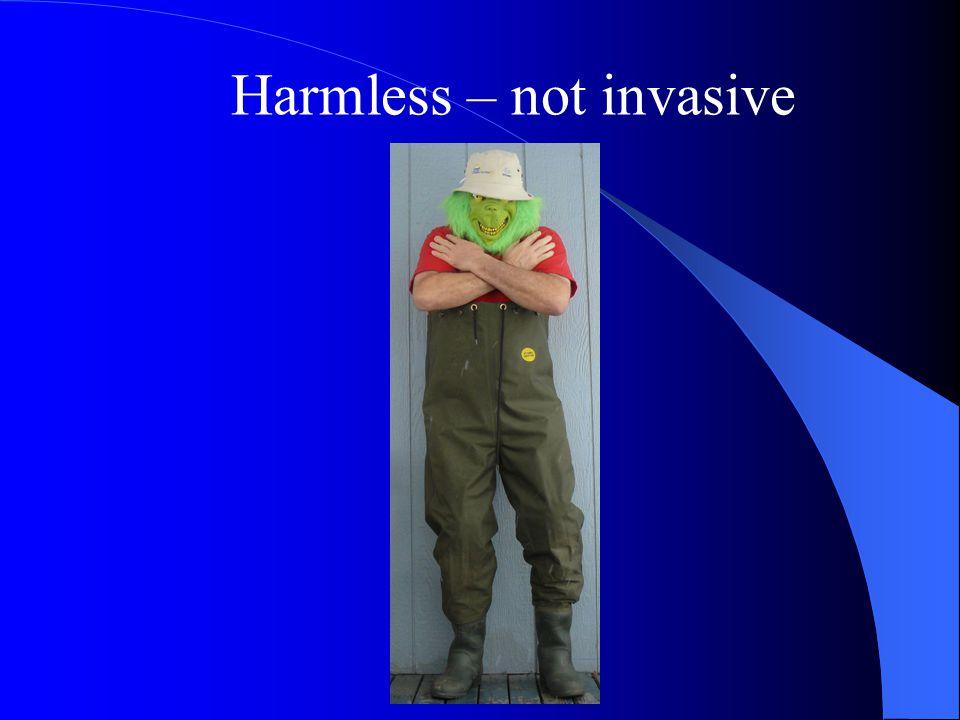 Harmless – not invasive