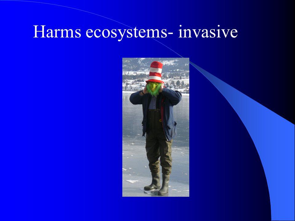 Harms ecosystems- invasive