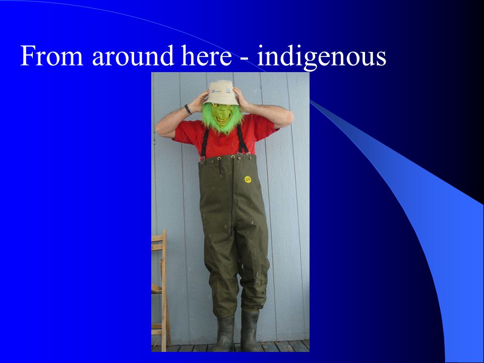 From around here - indigenous