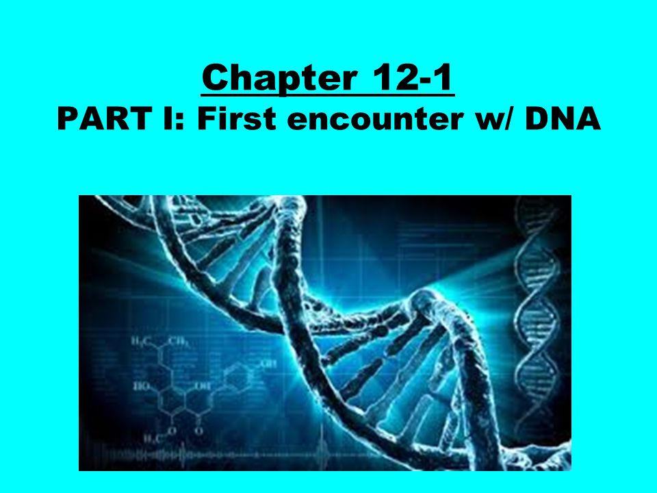 Chapter 12-1 PART I: First encounter w/ DNA