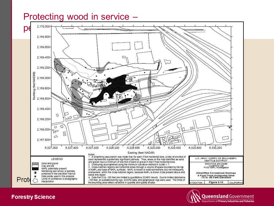 Forestry Science Protecting wood in service – performance without the downside Protection systems must be harmless to environment