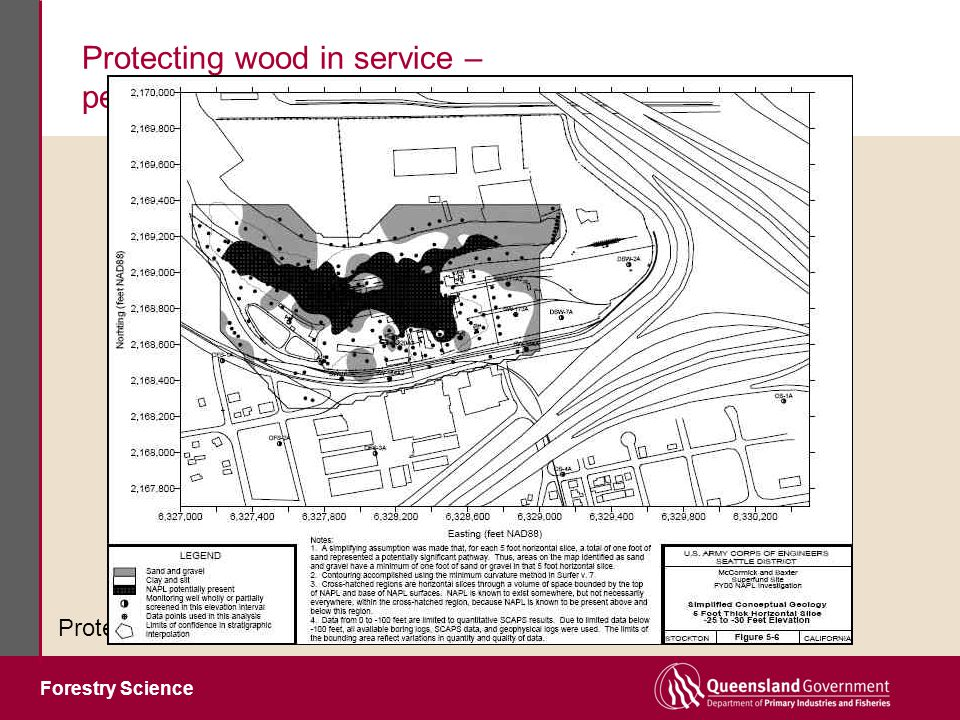 Forestry Science Protecting wood in service – performance without the downside Protection systems must be harmless to environment Heat treatments (180-240°C, under N 2 ) Heat denatures wood components utilised by fungi According to the amount of heat applied: Durability against fungi increases Strength decreases Resistance to termites decreases Hot oil treatments (100-180°C ) Some denaturation, but less than with the 'dry' heat treatments Oil imparts resistance to wetting and further improves durability Chemical modification of wood components (e.g.