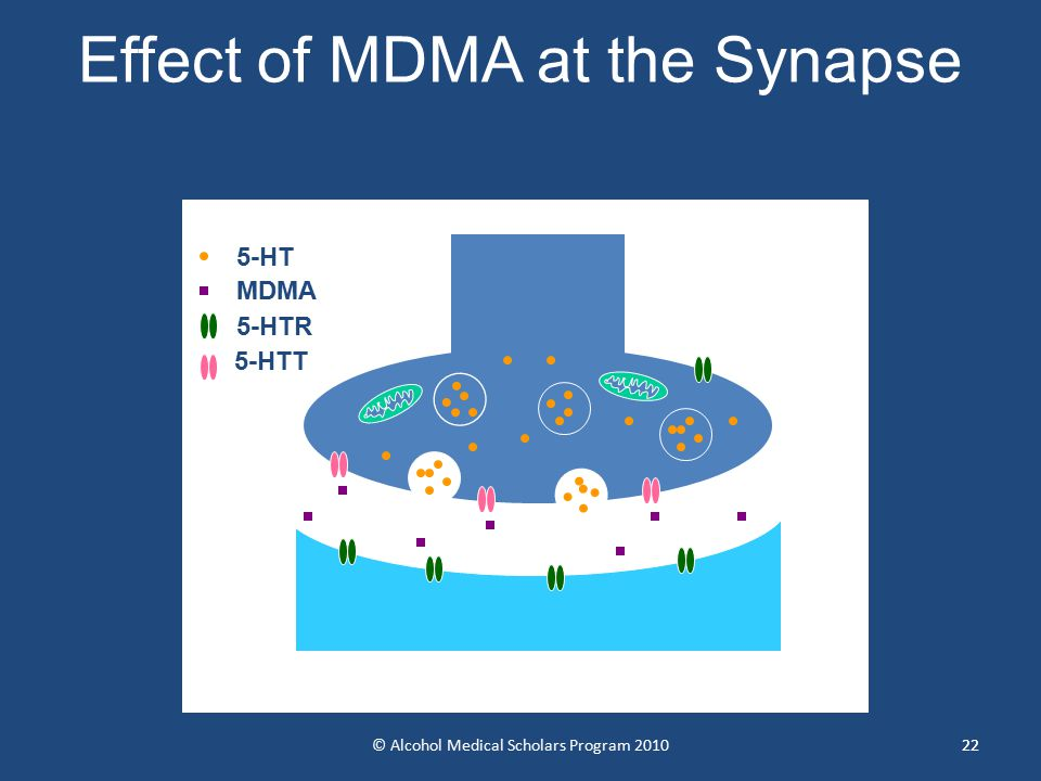22 Effect of MDMA at the Synapse 5-HTT 5-HT MDMA 5-HTR 22© Alcohol Medical Scholars Program 2010