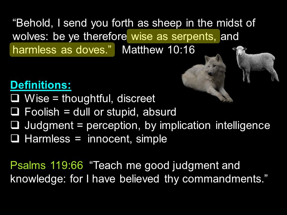 Behold, I send you forth as sheep in the midst of wolves: be ye therefore wise as serpents, and harmless as doves. Matthew 10:16 Definitions:  Wise = thoughtful, discreet  Foolish = dull or stupid, absurd  Judgment = perception, by implication intelligence  Harmless = innocent, simple Psalms 119:66 Teach me good judgment and knowledge: for I have believed thy commandments.