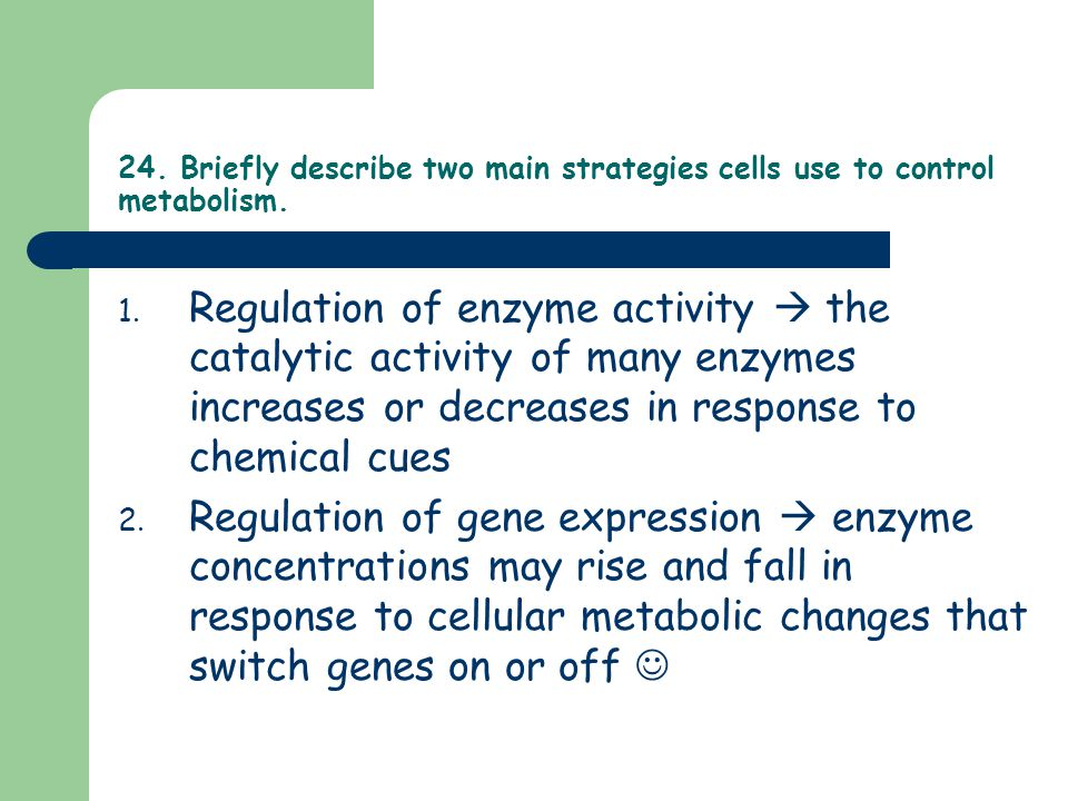 24. Briefly describe two main strategies cells use to control metabolism. 1. Regulation of enzyme activity  the catalytic activity of many enzymes in