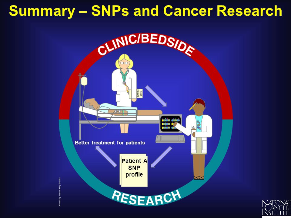 Summary – SNPs and Cancer Research Better treatment for patients Patient A SNP profile