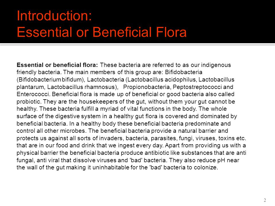 2 Essential or beneficial flora: These bacteria are referred to as our indigenous friendly bacteria.