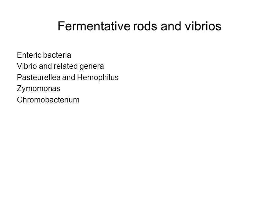 Relatedness among the enteric bacteria.