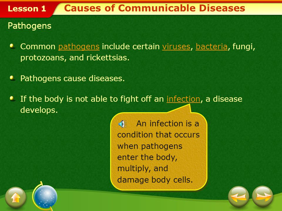 Lesson 1 Causes of Communicable Diseases Pathogens Common pathogens include certain viruses, bacteria, fungi, protozoans, and rickettsias. Pathogens c