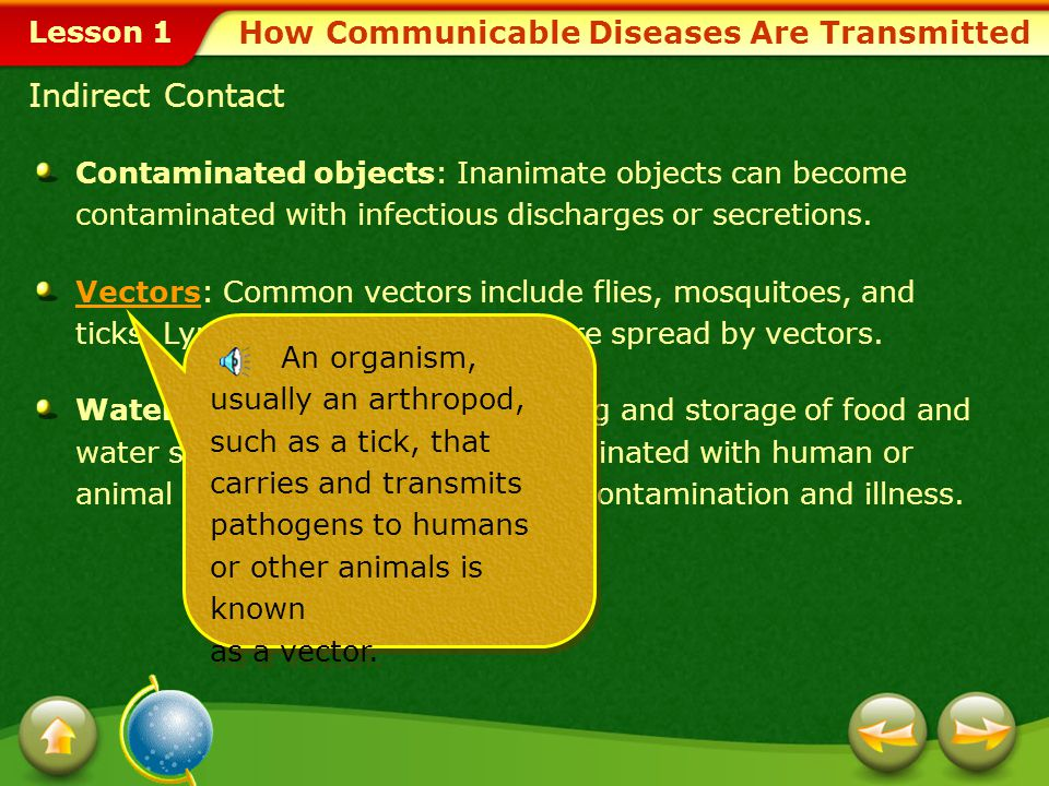 Lesson 1 Causes of Communicable Diseases Bacteria Most bacteria are harmless, and many types are essential for life. When bacteria enter the body, the