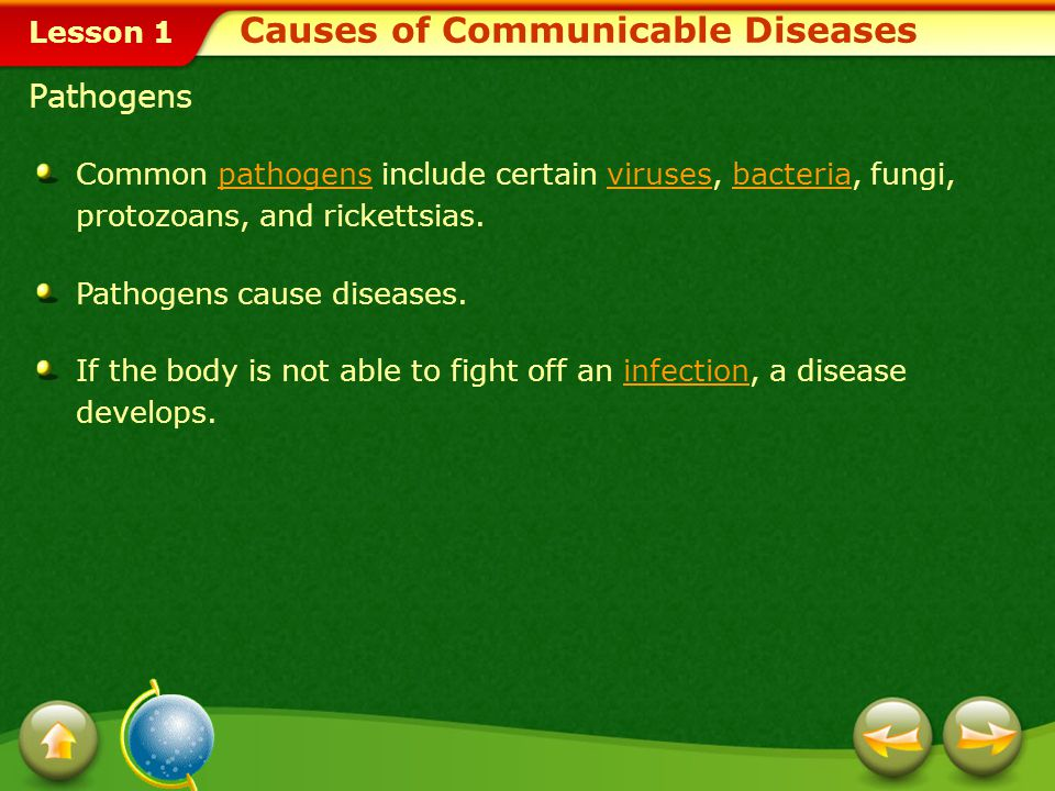 Lesson 1 Pathogens Common pathogens include certain viruses, bacteria, fungi, protozoans, and rickettsias.pathogensvirusesbacteria Pathogens cause diseases.