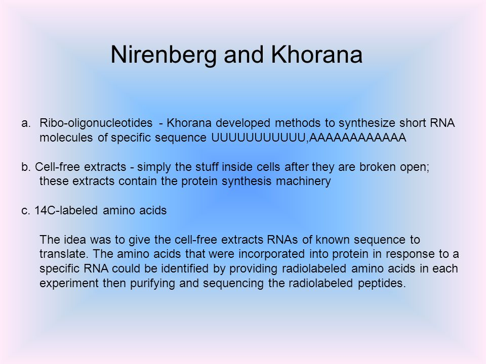 a.Ribo-oligonucleotides - Khorana developed methods to synthesize short RNA molecules of specific sequence UUUUUUUUUUU,AAAAAAAAAAAA b.