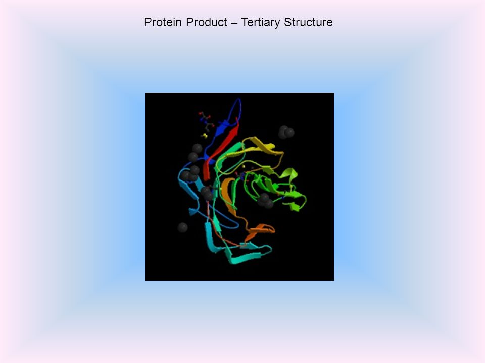 Protein Product – Tertiary Structure