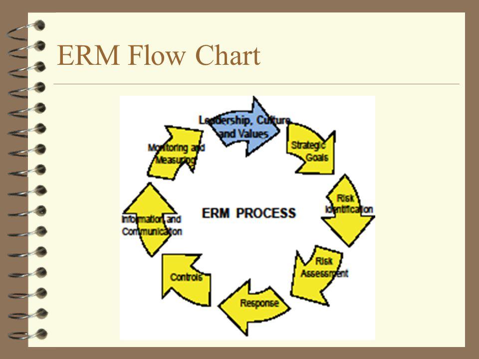 ERM Flow Chart