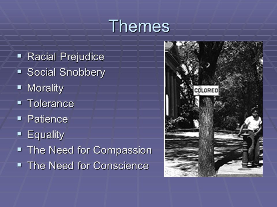 Themes  Racial Prejudice  Social Snobbery  Morality  Tolerance  Patience  Equality  The Need for Compassion  The Need for Conscience