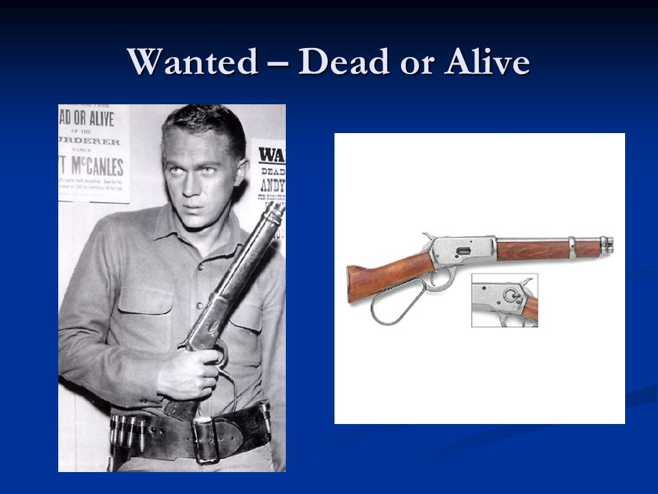 Wanted – Dead or Alive