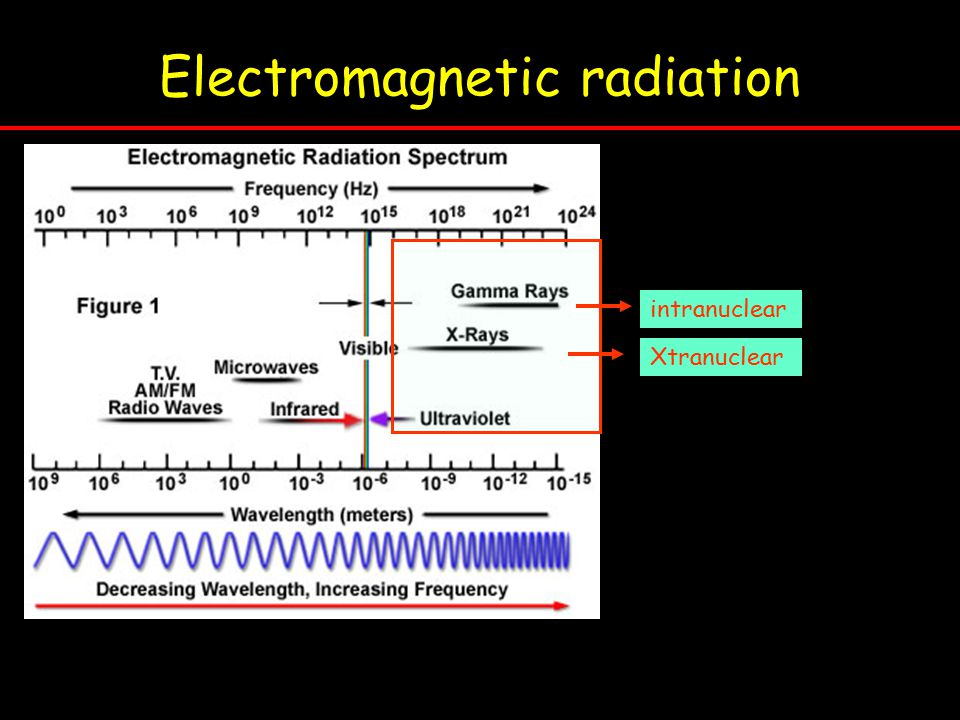 Electromagnetic radiation intranuclear Xtranuclear
