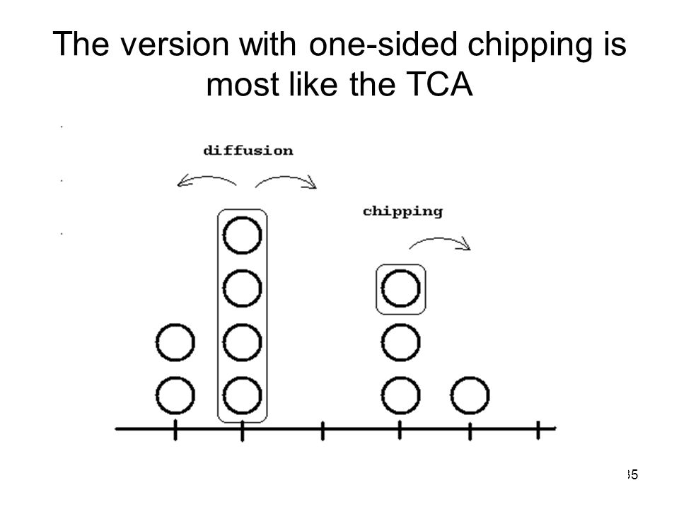 35 The version with one-sided chipping is most like the TCA