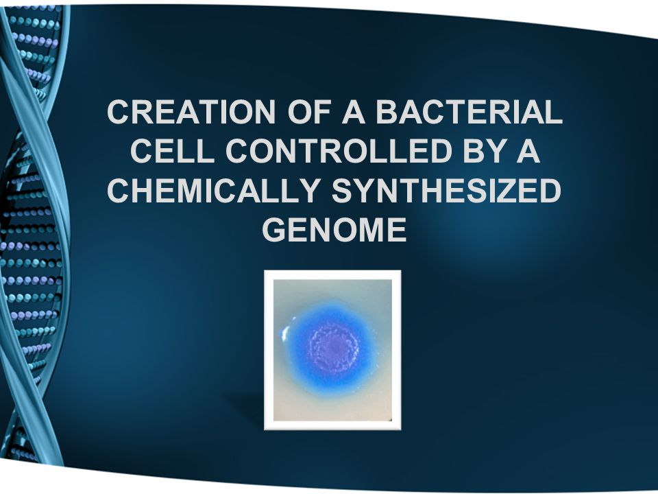 CREATION OF A BACTERIAL CELL CONTROLLED BY A CHEMICALLY SYNTHESIZED GENOME