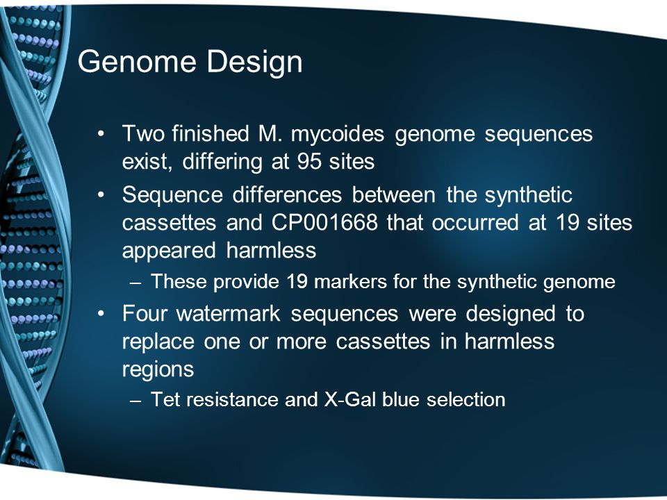 Genome Design Two finished M. mycoides genome sequences exist, differing at 95 sites Sequence differences between the synthetic cassettes and CP001668