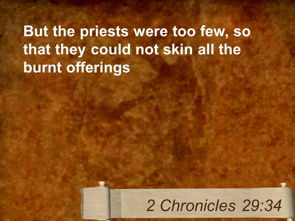 But the priests were too few, so that they could not skin all the burnt offerings 2 Chronicles 29:34