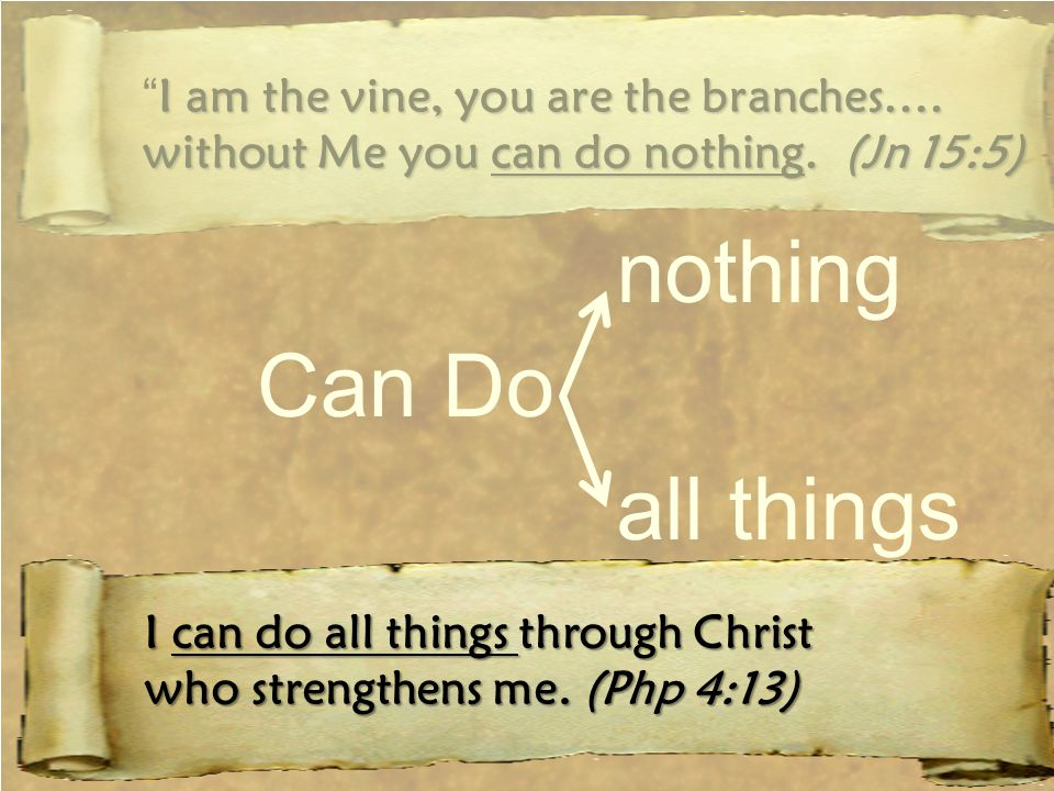 I am the vine, you are the branches…. I am the vine, you are the branches….
