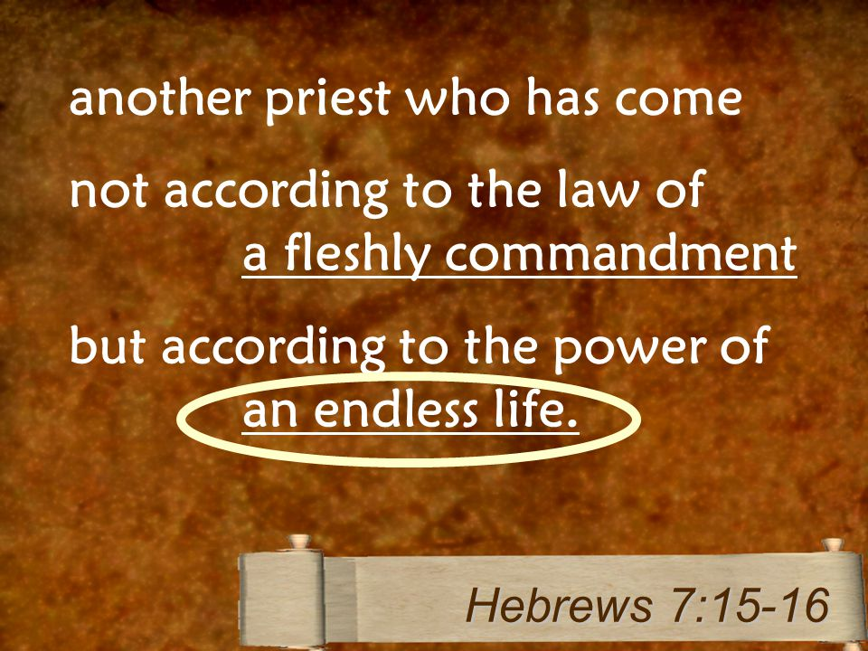 another priest who has come not according to the law of a fleshly commandment but according to the power of an endless life.