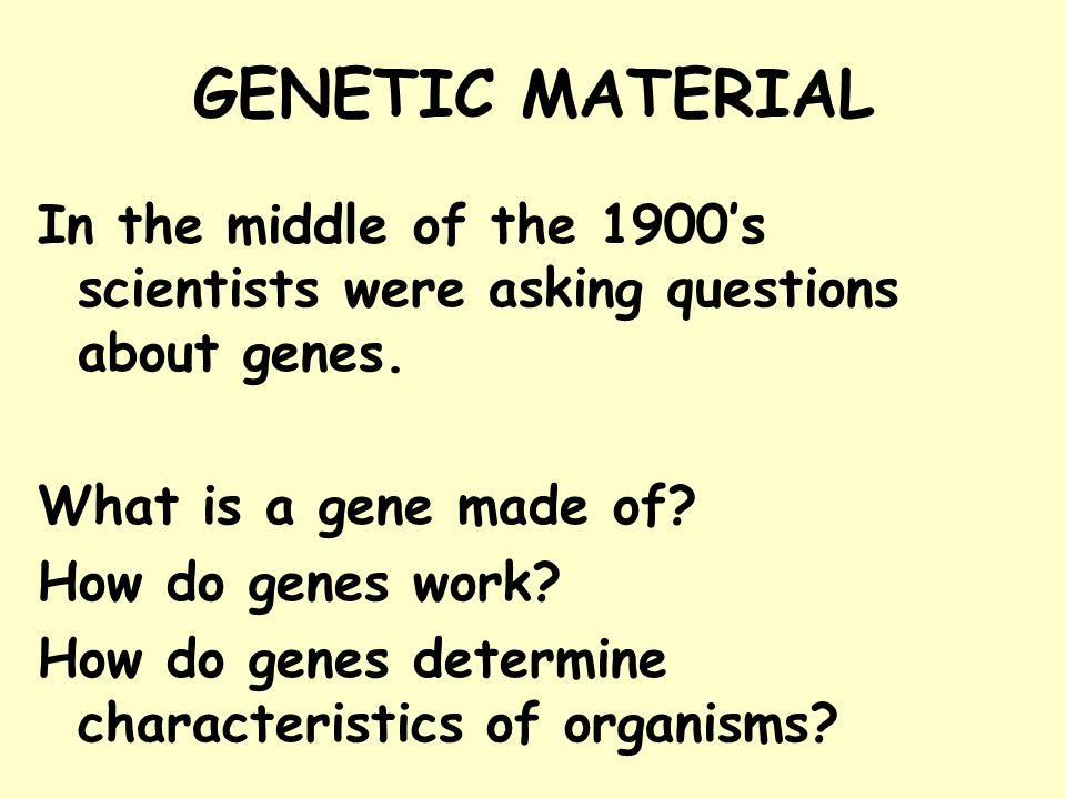 HOW IS DNA COPIED.
