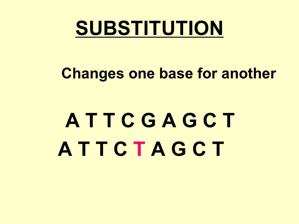 SUBSTITUTION Changes one base for another A T T C G A G C T A T T C T A G C T